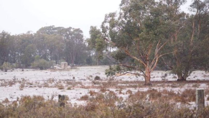 Snow Has Hit Queensland For The First Time In Five Years