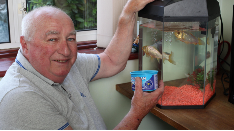 Britain's Oldest Goldfish Won As A Prize In 1974 Has Died Aged 44