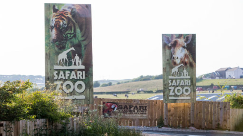 MP Calls For Investigation After Lion Dies At 'Britain's Worst Zoo'
