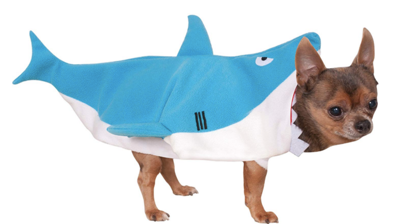 A Baby Shark Dog Costume Exists And It's Going To Make You Very Happy