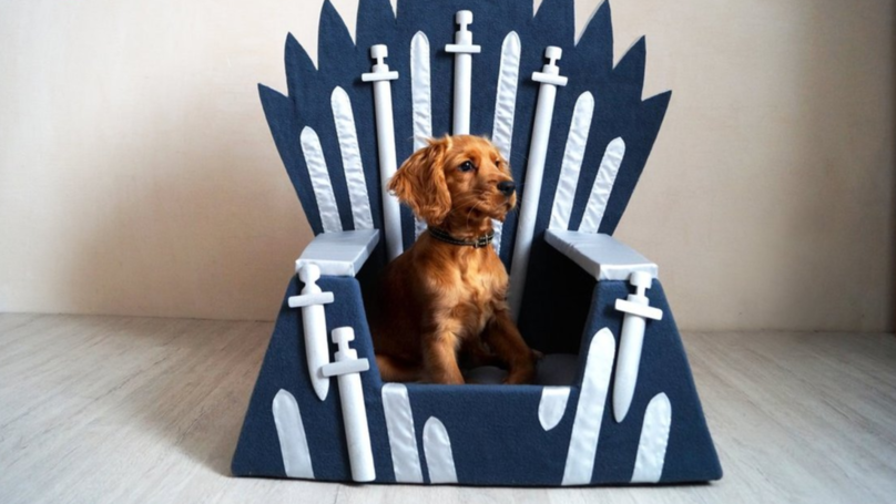 You Can Buy A Game Of Thrones Iron Throne Bed For Your Pet