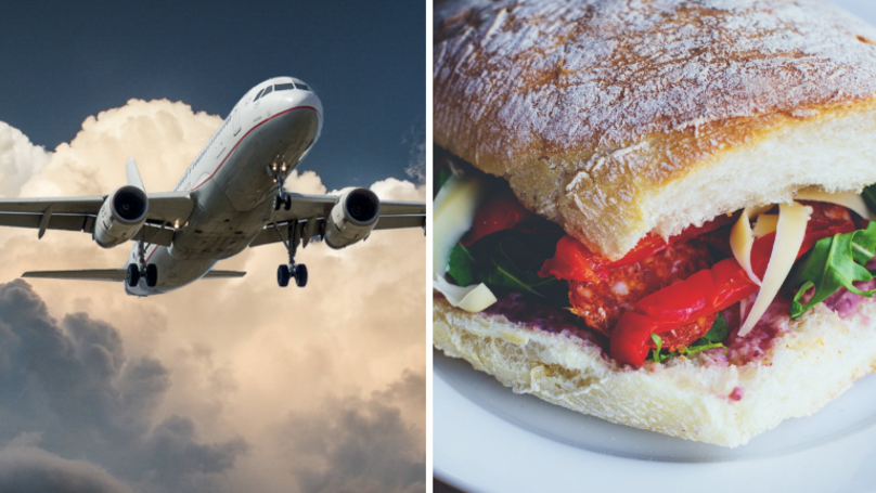 Man Shocked By Most Disappointing Sandwich Ever On Flight