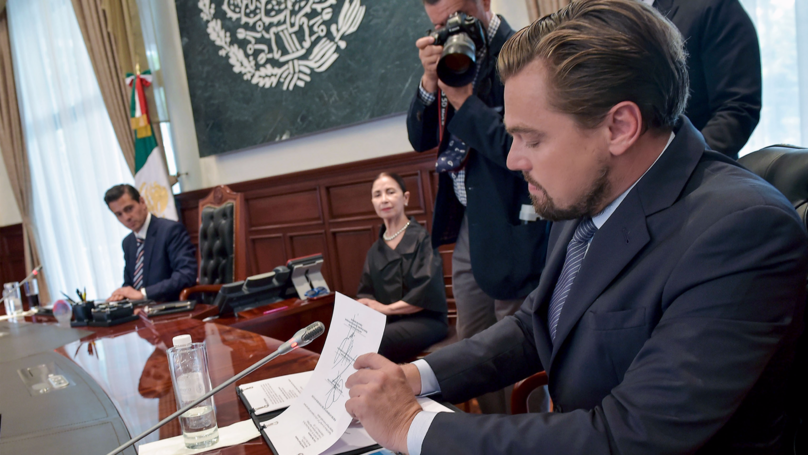 Leonardo DiCaprio's Charity Has Raised More Than $80m To Save The World's Wildlands