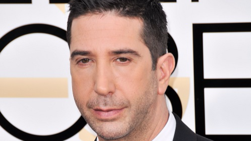David Schwimmer Praised For Making Sure Female Interviewer Felt Safe