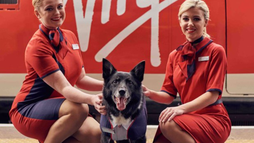 Stafford Station Dog Gets His Own Uniform From Virgin Trains