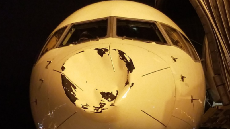 Plane Carrying NBA Stars Has Nose Dented After 'Hitting Something At 30,000ft'