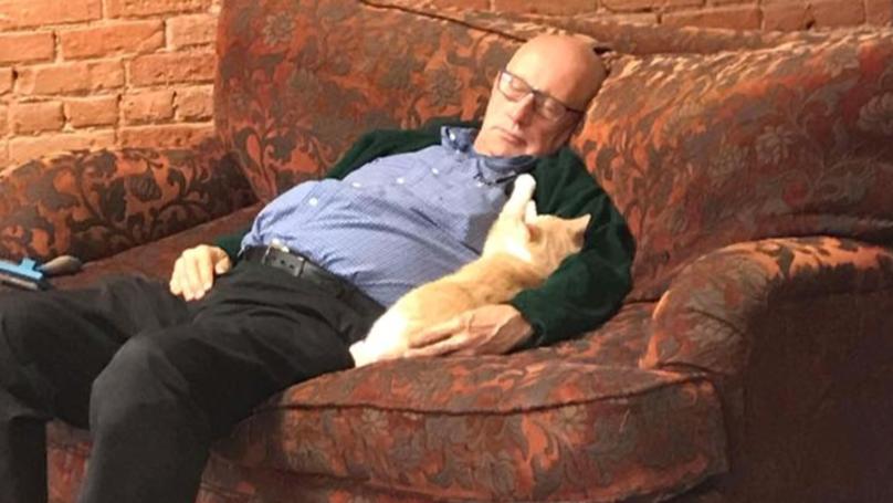 This Man Falls Asleep While Brushing Cats And Everyone Loves Him