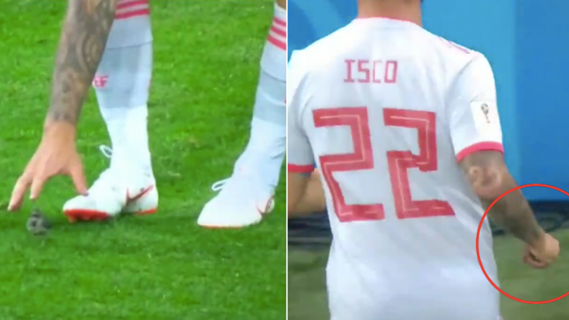Isco Saves The Day By Rescuing An Injured Bird During Game Against Iran