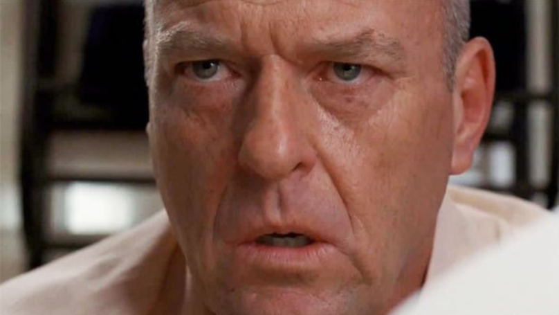Hank From 'Breaking Bad' Makes Epic X-Rated Blunder On Social Media