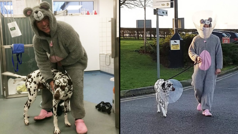 Vet Dresses Up As Mouse To Help Anxious Dog Wearing Cone Of Shame