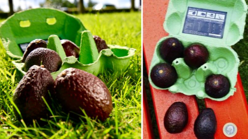 Tesco Is Now Selling Mini Avocados To Satisfy All Your Avocado Needs