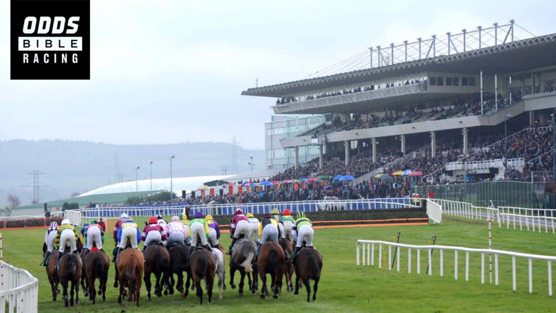 ODDSbibleRacing's Best Bets From Wednesday's Action At Leopardstown, Wincanton And More