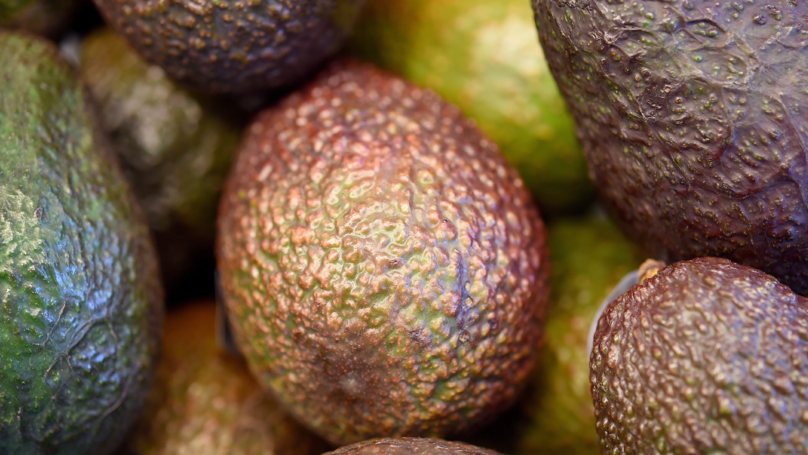 Holy Guacamole: Avocado Prices In New Zealand Hit $10 A Piece