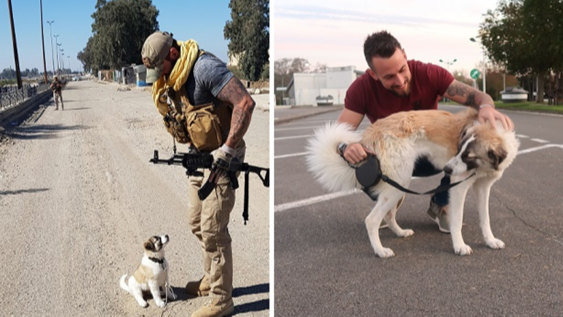 Bomb Disposal Expert Reveals His Love For The Puppy He Saved In Syria