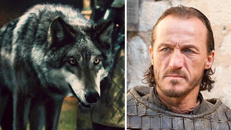 Game Of Thrones' Jerome Flynn Is Urging Fans To Stop Buying Huskies