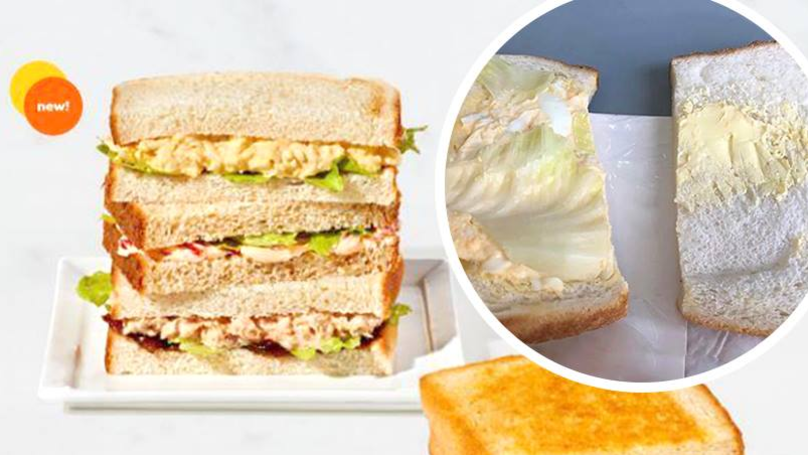 Man Shares Photo Of $9 Aeroplane Sandwich Containing Just One Piece Of Lettuce