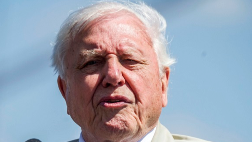Sir David Attenborough Unimpressed With TV Presenter's Interview Questions