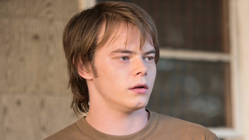 'Stranger Things' Actor Charlie Heaton 'Denied Entry Into US After Being Caught With Cocaine'
