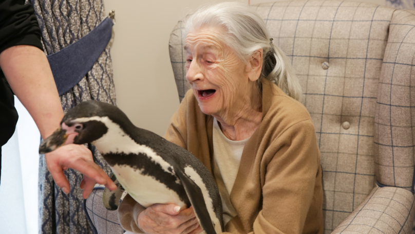 92-Year-Old's Wishes Come True As Penguins Visit Her In Care Home