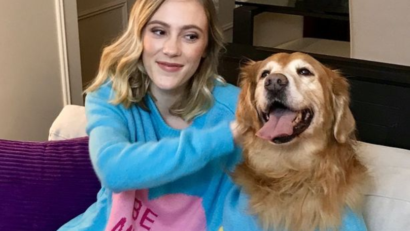 Double-Headed Jumpers For You And Your Dog Are Now Available