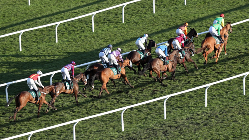 Two Horses Die After Falls On Day One At Cheltenham Festival