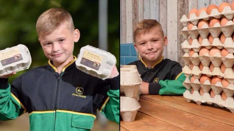 Eight-Year-Old Set To Make '£13K A Year From Egg Business'
