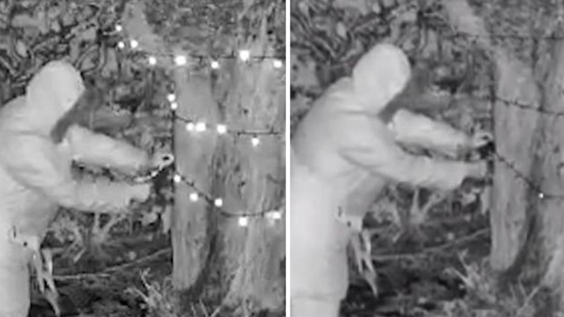Elderly Woman Sneaks Into Neighbour's Garden And Cuts Down Christmas Lights