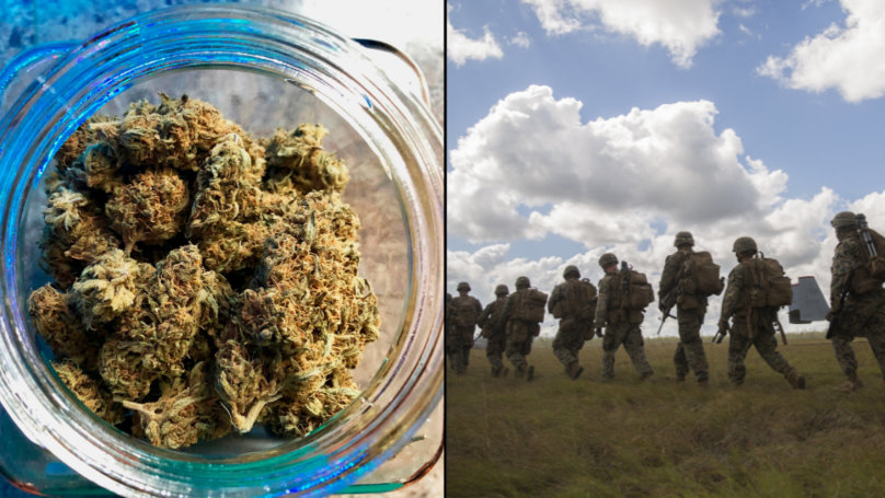 Aussie Veterans With PTSD To Get First Ever Medicinal Cannabis Trial