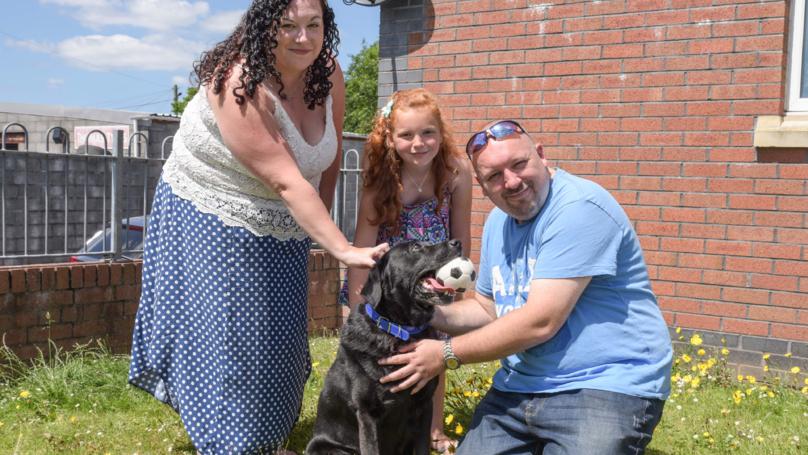 Dog Owner Finds Pet Labrador Nine Years After He Went Missing
