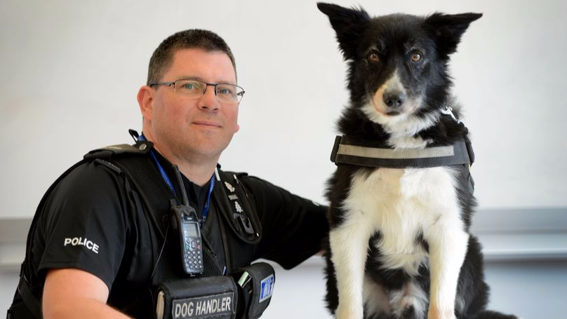 Manchester Terror Attack Police Dog Is Still Mentally Scarred