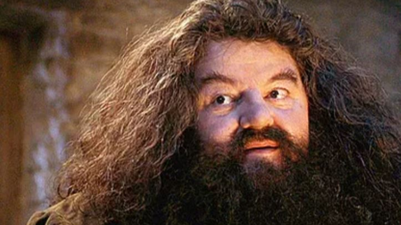 'Harry' Potter Star Robbie Coltrane Now Using A Wheelchair Following Osteoarthritis Diagnosis