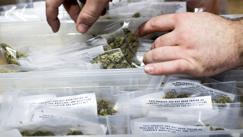 States With Legal Medical Marijuana See Drop In Violent Crime, Study Finds