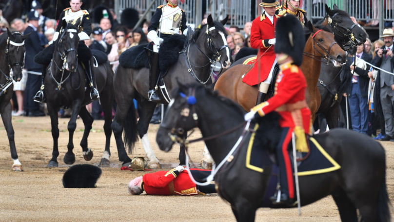 Soldier Thrown From Horse During Queen's Birthday Celebrations