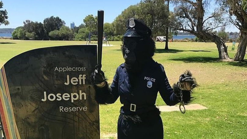 Woman Dresses Up As Gorilla Police Officer To Catch Sex Pest