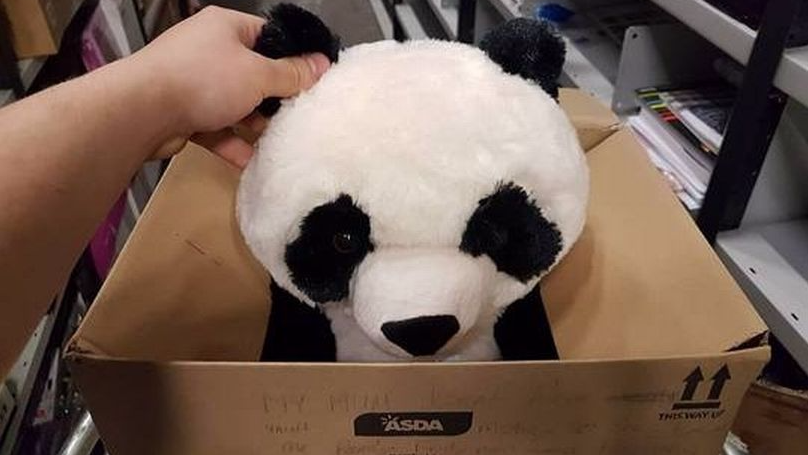 Little LAD Leaves Heartbreaking Note On Asda Cuddly Toy