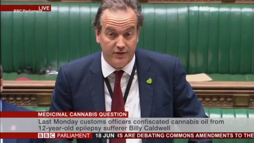 Expert Panel Set To Look At Medicinal Cannabis Benefits