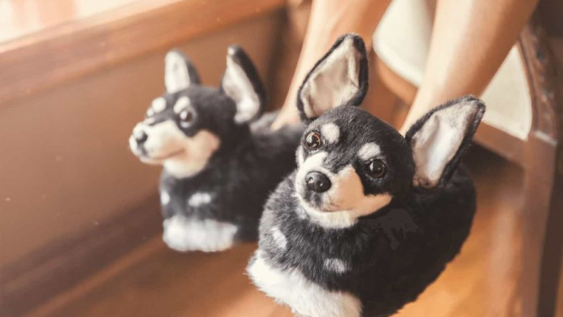 You Can Now Buy Custom Slippers Made To Look Exactly Like Your Own Dog
