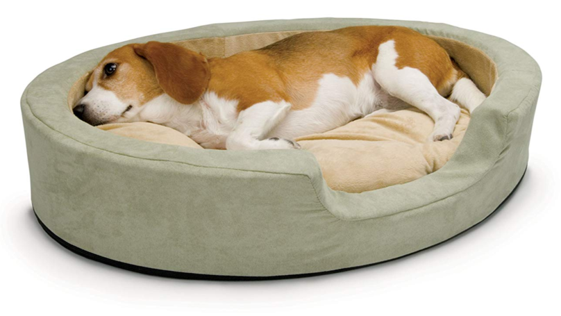 Heated Dog Beds Exist Because Dogs Get Cold Too