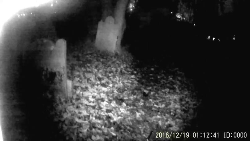 Video Shows 'Ghost' Flying Towards Camera In 800-Year-Old Cemetery