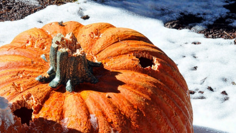 Brits Could Face A White Halloween With Snow Predicted Next Week