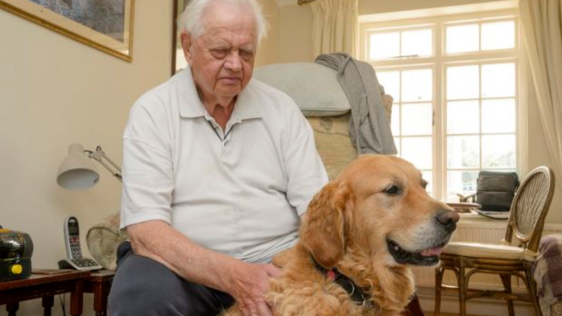 Blind Pensioner's Guide Dog Being Taken Away Over Concerns For His Weight