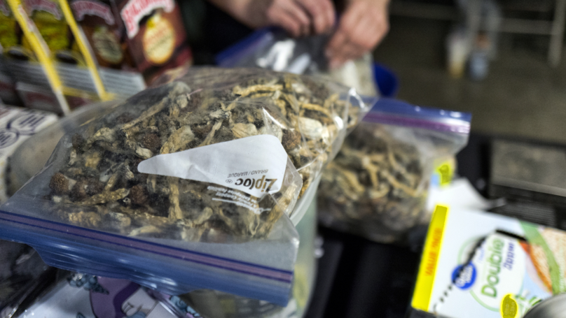 Denver Has Become The First City US City To Decriminalise 'Magic Mushrooms'