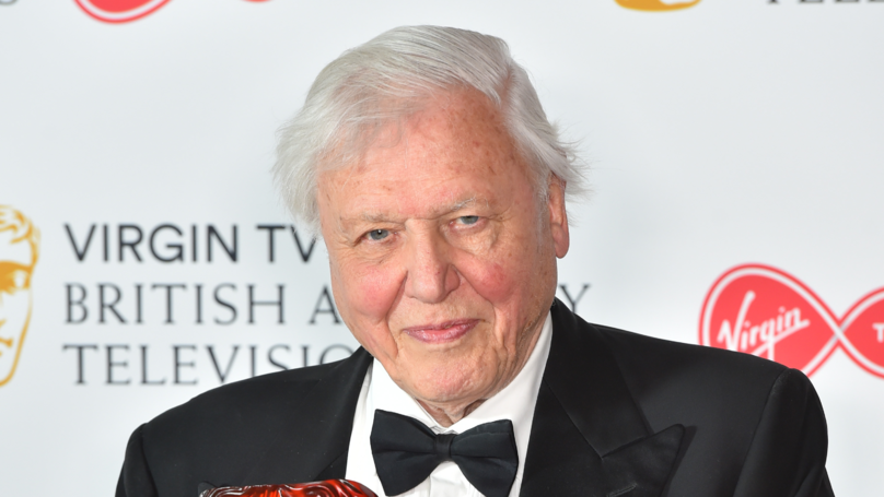 Sir David Attenborough Won't Let TV Crews Save Dying Animals For This Reason