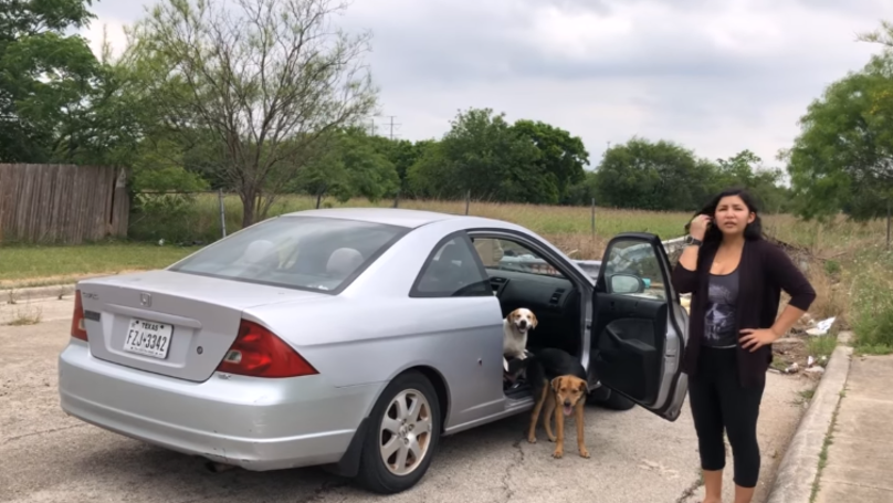 Woman Caught Trying To Dump Her Dogs In Texas