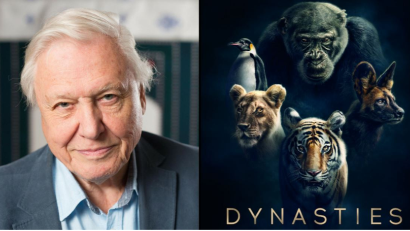 Sir David Attenborough's Next Must-Peek BBC Documentary To Air In Autumn thumbnail