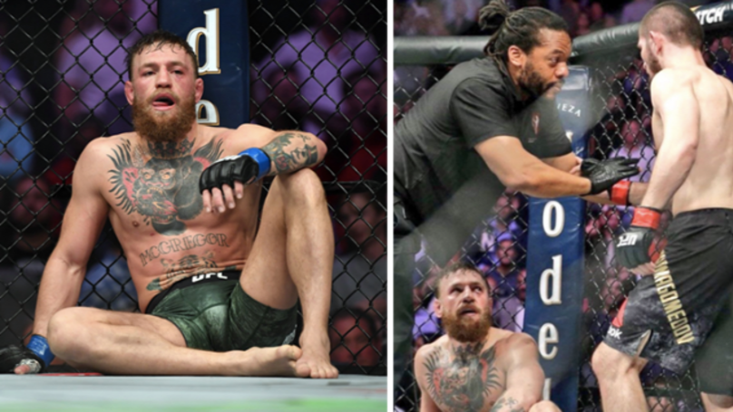 Khabib Nurmagomedov vs Conor McGregor II Should Happen In 2019