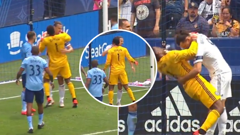 Zlatan Ibrahimovic Banned For Two Games After Grabbing Keeper By The Throat