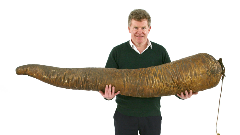 Mystery Buyer Splashes Out Thousands On Sperm Whale Penis At Auction