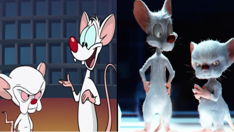 Someone Has Shown Us What A Live-Action Pinky And The Brain Would Look Like
