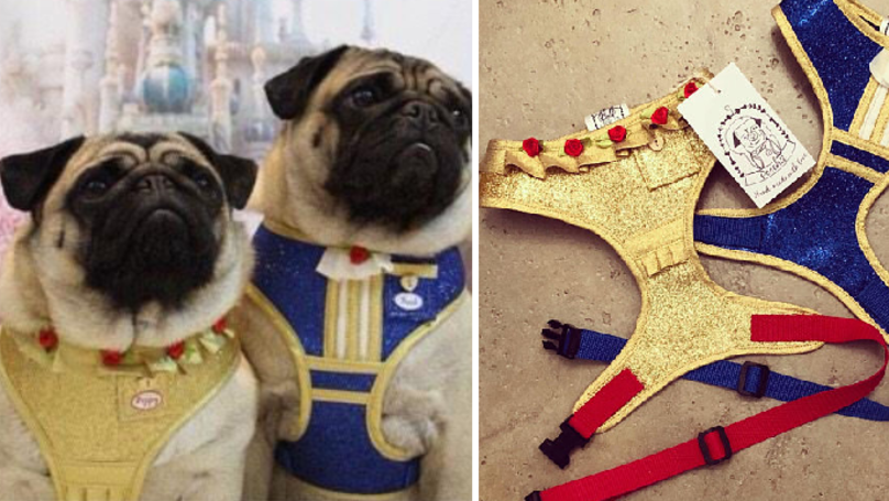 These Beauty And The Beast Harnesses Are An Enchanting Addition To Your Dog's Wardrobe